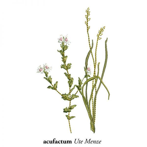 Stickdatei Sommerwiesengräser 1 - 2-4035-103