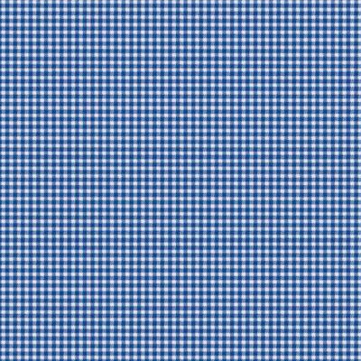 Westfalenstoff blau-weiß kariert