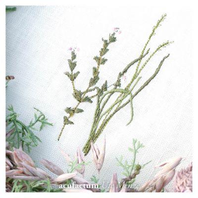 Stickdatei Sommerwiesengräser 1